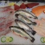 Ständig wechseldes Frisch-Fisch Angebot